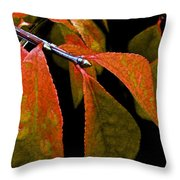 Snippet Of Fall Throw Pillow