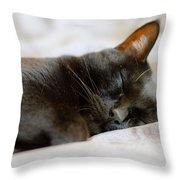 Snoozy Kitty Throw Pillow