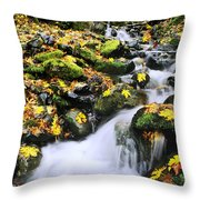 Snoqualmie National Fores Throw Pillow