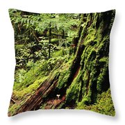 Snoqualmie National Forest Throw Pillow