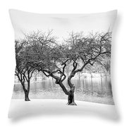 Snow Along The Schuylkill River Throw Pillow