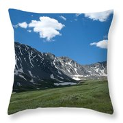 Snow And Mountains And Grass Throw Pillow
