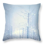 Snow And Remnants Of The Fire 2 Throw Pillow