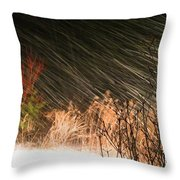 Snow And Wind Throw Pillow