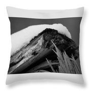 Snow Blanket Throw Pillow