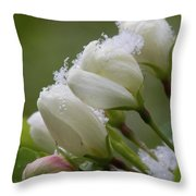 Snow Blossoms Throw Pillow