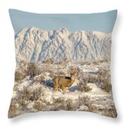 Snow-buck In Wyoming Throw Pillow