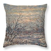 Snow By Brook. Throw Pillow