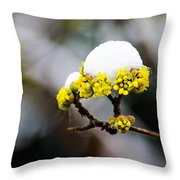 Snow Capped Flower Throw Pillow