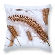 Snow Capped Foxtail Throw Pillow