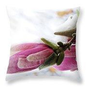 Snow Capped Magnolia Blossoms Throw Pillow