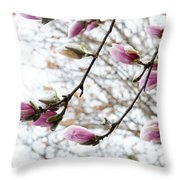 Snow Capped Magnolia Tree Blossoms 2 Throw Pillow
