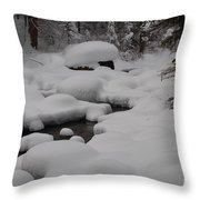 Snow Capret Throw Pillow