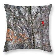 Snow Cardinal Throw Pillow