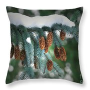 Snow Cones Throw Pillow