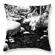 Snow Covered Banks Throw Pillow
