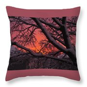 Snow Covered Branches At Sunset Throw Pillow
