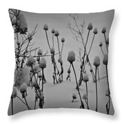 Snow Covered Coneflowers Throw Pillow