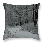 Snow Covered Path Into The Woods Throw Pillow