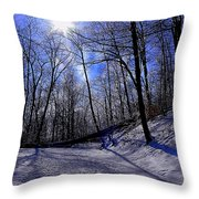 Snow Covered Path Throw Pillow