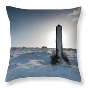 Snow Covered Post II Throw Pillow