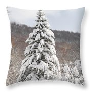 Snow Covered Spruce Throw Pillow