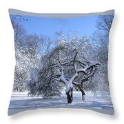 Snow-covered Sunlit Apple Trees Throw Pillow