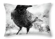 To Know A Crow Throw Pillow