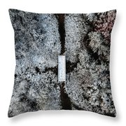 Snow Day In Austin Throw Pillow
