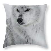 Snow Dog Throw Pillow