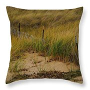 Snow Fence In Sand Throw Pillow