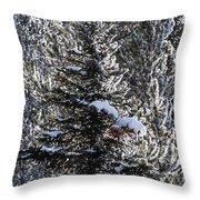 Snow Flocked Pines One Throw Pillow