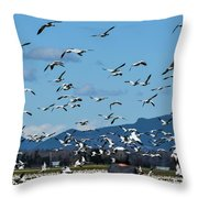Snow Geese Rising Throw Pillow