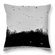 Snow Geese Winter Home In Delaware Throw Pillow