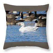 Snow Goose Throw Pillow