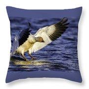 Snow Goose2 Throw Pillow