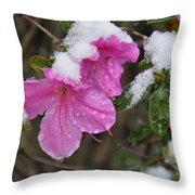 Snow In Houston Throw Pillow