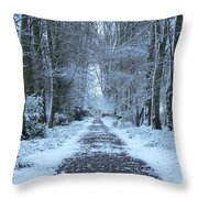 Snow In The Avenue Throw Pillow