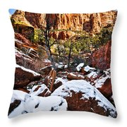 Snow In The Canyons Throw Pillow