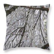 Snow In Yosemite Throw Pillow