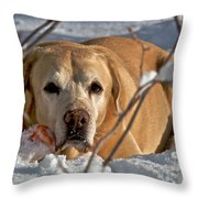 Snow Lab Throw Pillow