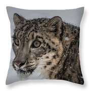 Snow Leopard 2 Throw Pillow