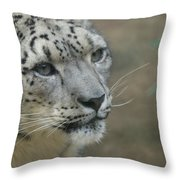 Snow Leopard 8 Throw Pillow
