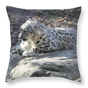Snow-leopard Throw Pillow