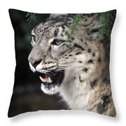 Snow Leopard Portrait Throw Pillow