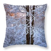 Snow Maple Morning Throw Pillow