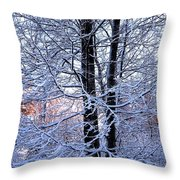 Snow Maple Morning Landscape Throw Pillow