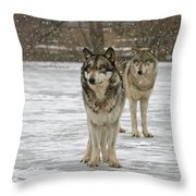 Snow Mates Throw Pillow