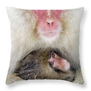 Snow Monkey Love Throw Pillow
