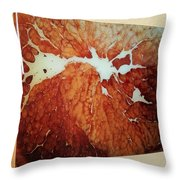 Snow On A Beetle's Back Throw Pillow